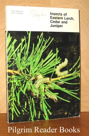 Image for Insects of Eastern Larch, Cedar and Juniper. Forestry Technical Report 28.