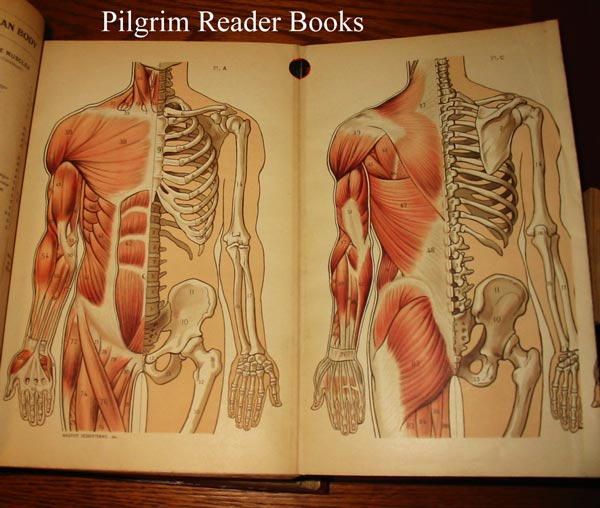 Image for Lippincott's Quick Reference Book for Medicine and Surgery.