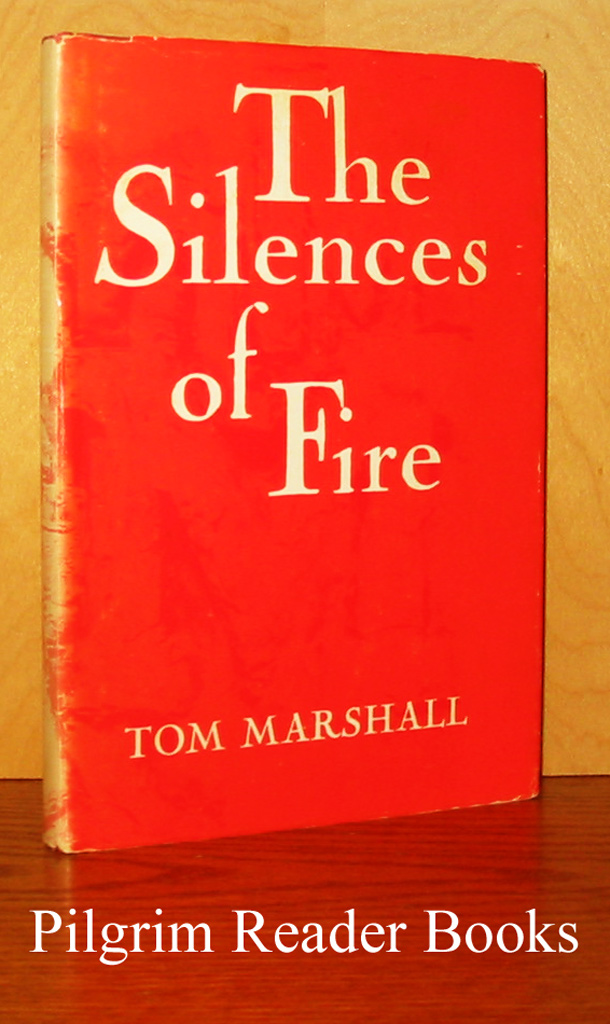 Image for The Silences of Fire.