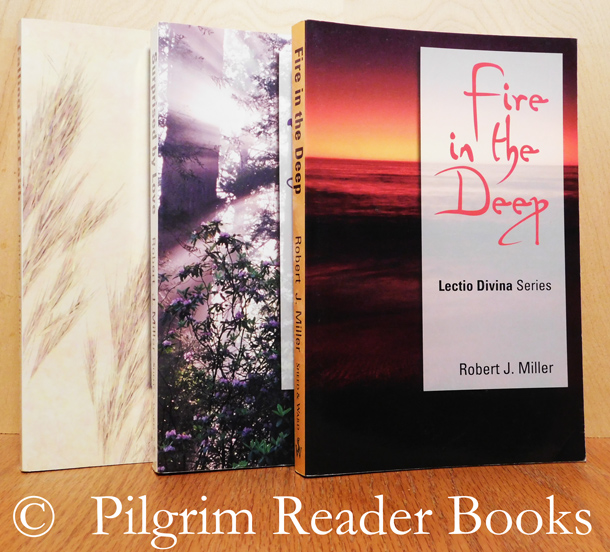 Image for Fire in the Deep - Surprised by Love - Falling into Faith. Lectio Divina Series, Cycles A. B & C. (complete in 3 volumes).