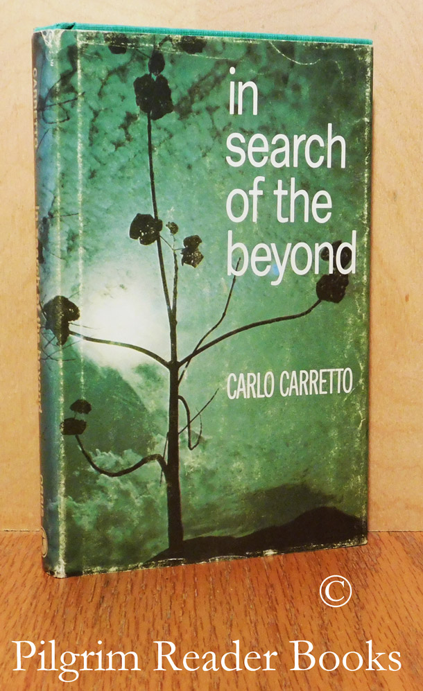 Image for In Search of the Beyond.