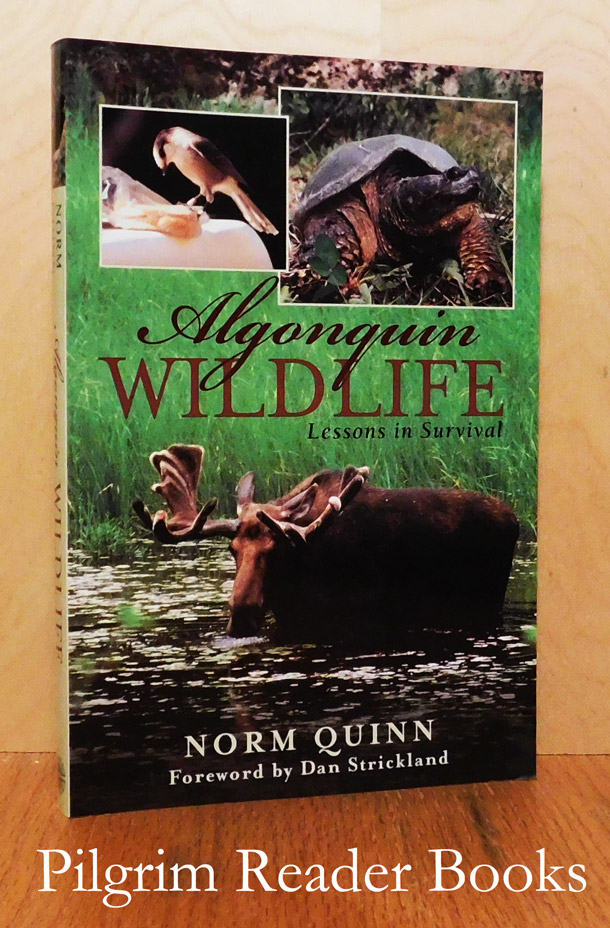 Image for Algonquin Wildlife: Lessons in Survival.